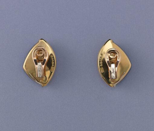 de Vroomen ear clips